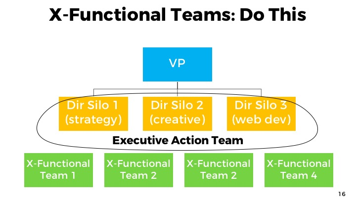 Cross functional teams: do